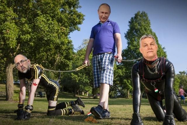 Putin puppies